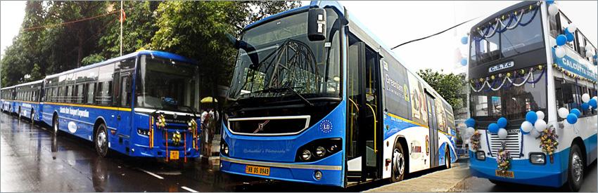 CSTC Buses